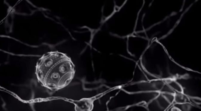 How Might Nanobots Change Medicine – First Human Trial