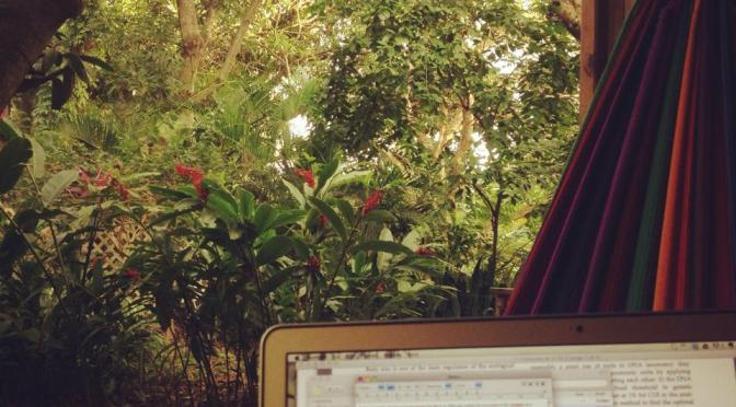 What's in a name: from vagabond to digital nomad