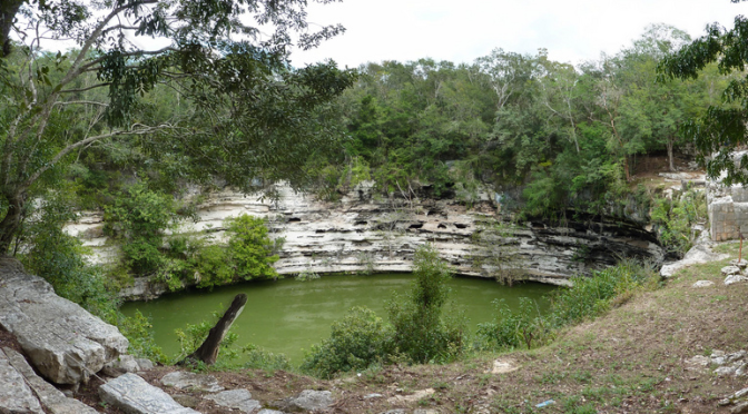 Bones Abroad: What Lies Beneath the Surface of Mexico's Cenotes