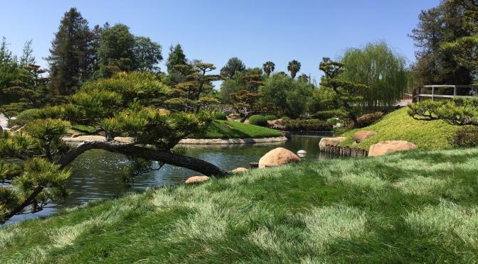 The Japanese Garden & The Cascades