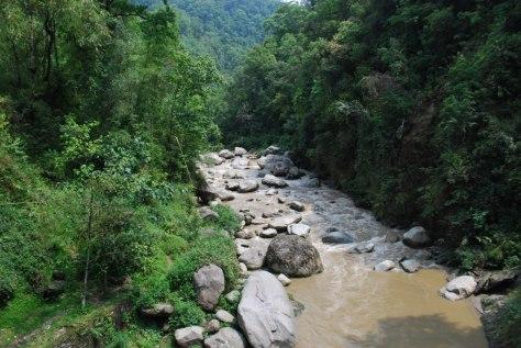 himalayan stream 2